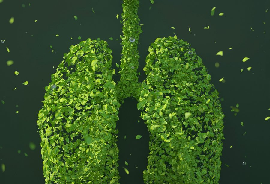 How does climate change actually affect lung health?